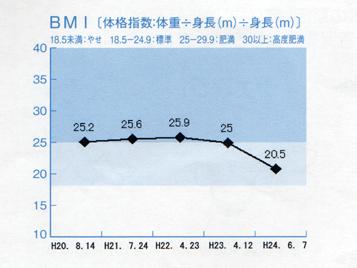 せめてひとなみに。-BMI