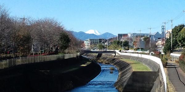 せめてひとなみに。-大栗川から望む富士